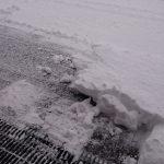 大雪、再び
